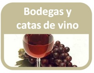 bodegas y catas de vino 300x235 Home