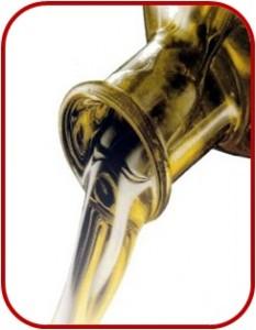 catas de aceites y vinos para empresas