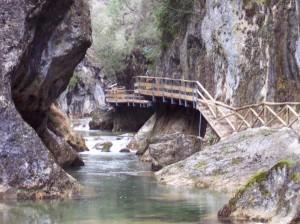 Nacimiento del Rio Borosa
