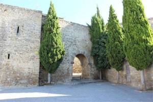 Puerta de Granada IMG 01111 300x200 - La Puerta de Granada, su Tesoro escondido