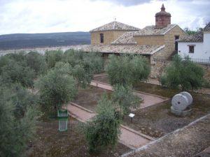 museo olivo 300x225 - Oleoturismo cerca de Úbeda y Baeza