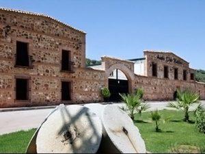 oro bailen 300x225 - Oleoturismo cerca de Úbeda y Baeza
