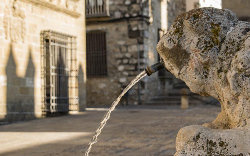 Turismo Ubeda y Baeza: fuente los leones